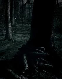 dark tree006